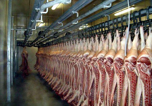 Оборудование для хранения мясной продукции на производстве